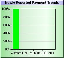 Newly Reported Payment DBT Chart